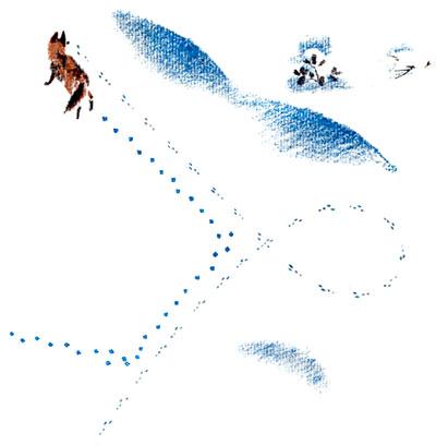 Бианки Снежная Книга